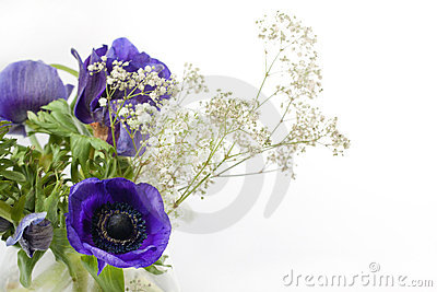 Bouquet of blue anemones