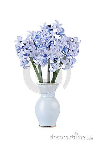 Bouquet of blue hyacinths