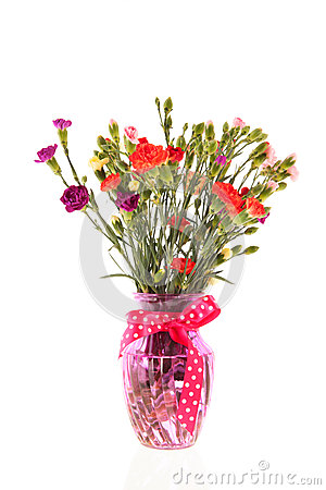 Bouquet colorful Dianthus