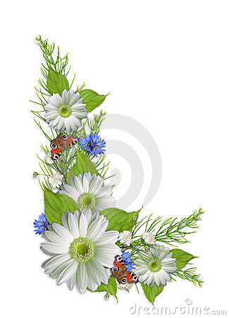 Bouquet with colorful summer flowers isolated
