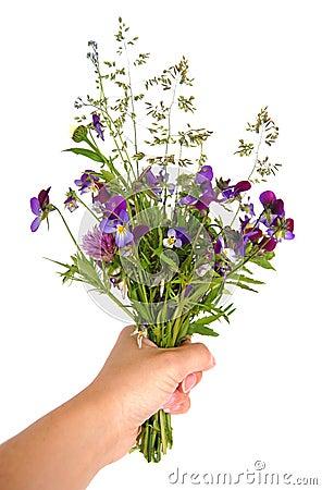 Bouquet de fixation de main des fleurs