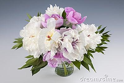 bouquet de fleur de pivoine image stock image 38570061. Black Bedroom Furniture Sets. Home Design Ideas
