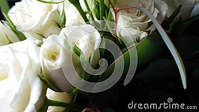 Bouquet de lindas rosas brancas Acessório de casamento Presente para aniversário, aniversário, dia da mãe, dia dos namorados video estoque