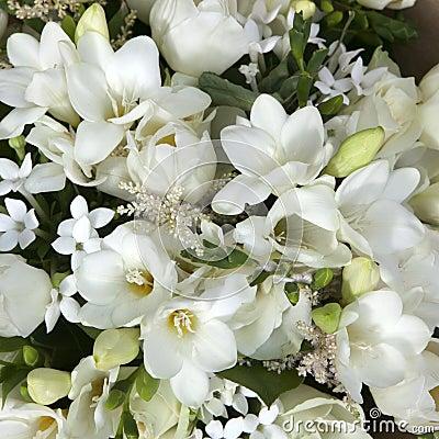 bouquet de mariage des fleurs blanches photo stock image 48822840. Black Bedroom Furniture Sets. Home Design Ideas