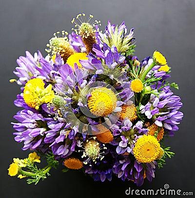 Bouquet des fleurs sauvages photos libres de droits image 21502678 - Bouquet de fleurs sauvages ...