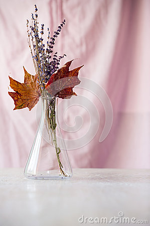 Bouquet of dried flowers and maple leaves in flask
