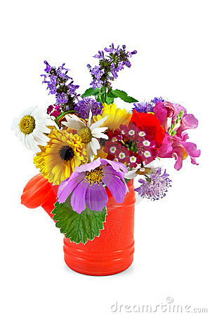 Bouquet of flowers in the nursery watering