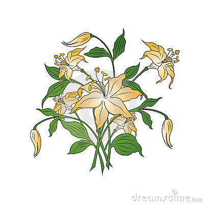 Bouquet of flowers in simple colors on white background, vector