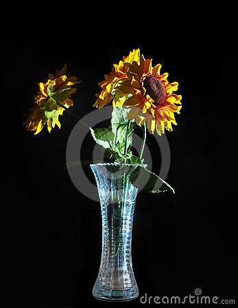 Bouquet of Flowers in a Vase Isolated on a Black B