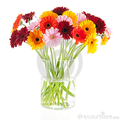 Free Bouquet Gerber Flowers In Glass Vase Stock Images - 30551064