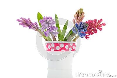 Bouquet Hyacinths