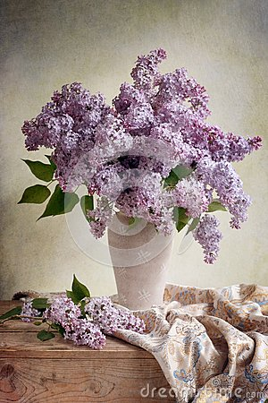 http://thumbs.dreamstime.com/x/bouquet-lilas-26252996.jpg