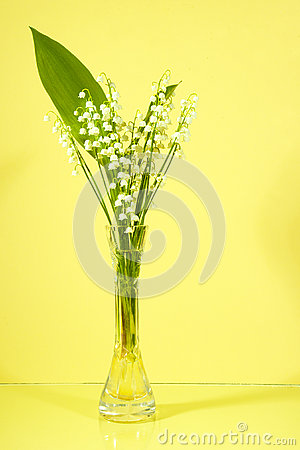 Bouquet Of Lilies Of The Valley Royalty Free Stock Photo - Image: 25377735