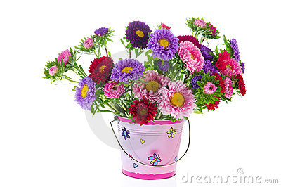 Bouquet New England Asters