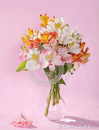 Free Bouquet Of Alstroemeria Stock Photos - 25737133