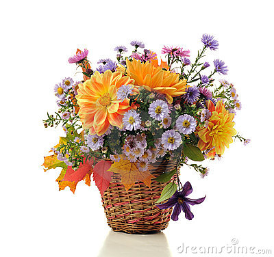 Free Bouquet Of Autumn Flowers Royalty Free Stock Photography - 11399037