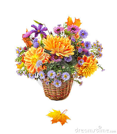 Free Bouquet Of Autumn Flowers Stock Photography - 13347122