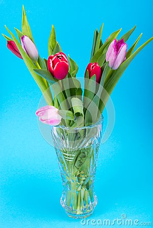 Free Bouquet Of Beautiful Fresh Tulips In Crystal Vintage Vase Royalty Free Stock Image - 111809936