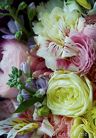 Free Bouquet Of Flowers Stock Image - 19837781