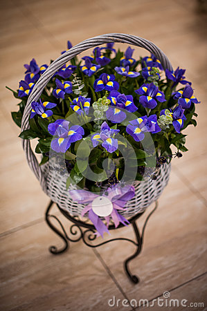 Free Bouquet Of Irises In A Basket Stock Photo - 60714970