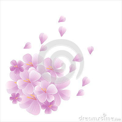 Free Bouquet Of Light Purple Violet Flowers And Petals Flying Isolated On White Background. Apple-tree Flowers. Cherry Blossom. Vector Royalty Free Stock Photo - 79867125