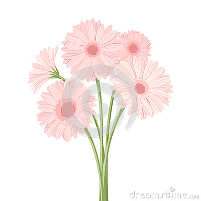 Free Bouquet Of Pink Gerbera Flowers. Vector Illustration. Royalty Free Stock Image - 42879416
