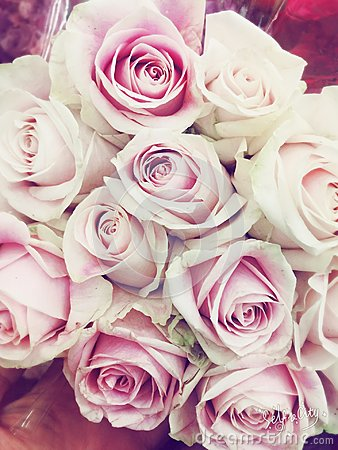 Free Bouquet Of Pretty Soft White And Pink Roses Royalty Free Stock Image - 68825486