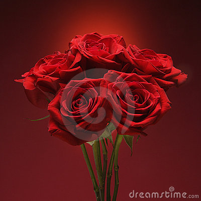 Free Bouquet Of Red Roses. Royalty Free Stock Images - 2432329