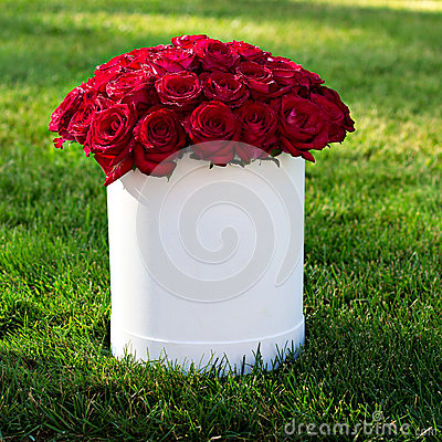 Free Bouquet Of Red Roses Stock Images - 65817004