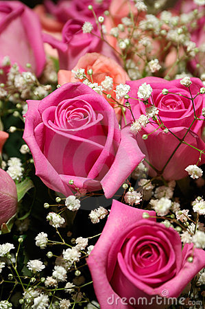 Free Bouquet Of Roses Stock Image - 3643791