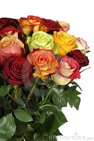 Free Bouquet Of Roses Stock Photos - 5279703