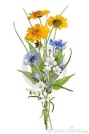 Free Bouquet Of The Field Wild Flowers, Easter Colors, Isolated Royalty Free Stock Photo - 84542255