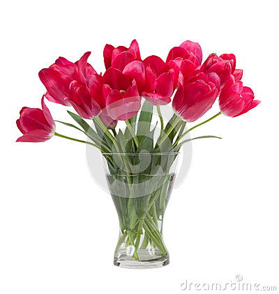 Free Bouquet Of Tulips In Glass Vase Isolated On White Background Stock Image - 48664601