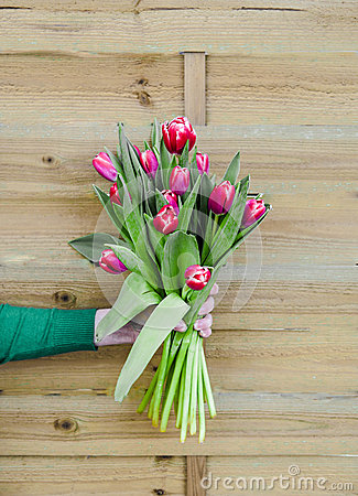 Free Bouquet Of Tulips In Hand On Wooden Background Stock Images - 87685524