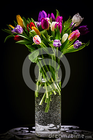 Free Bouquet Of Tulips In Vase On Dark Stock Photography - 51271862