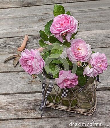 Free Bouquet Of Wild Rose Stock Photos - 53968933