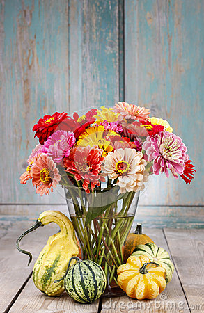 Free Bouquet Of Zinnia Flowers Royalty Free Stock Photos - 43775338