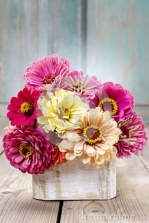 Free Bouquet Of Zinnia Flowers Stock Images - 43802554