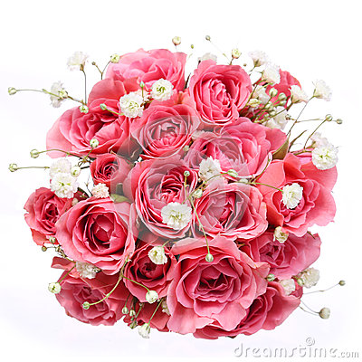 Bouquet of Pink Roses isolated on white background. Bridal