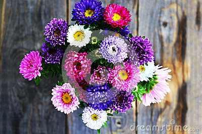 White Aster Bouquet