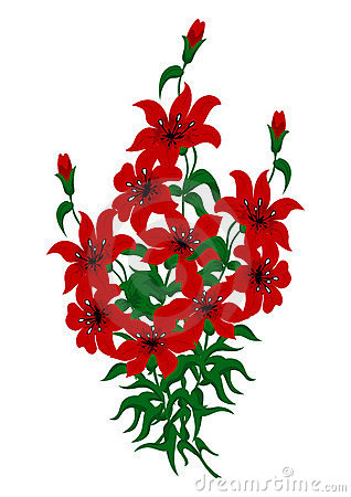 Bouquet of red lilies
