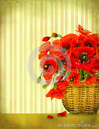 Bouquet of red poppy flowers
