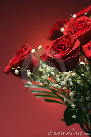 Bouquet Of Red Roses. Royalty Free Stock Images - Image: 2432319