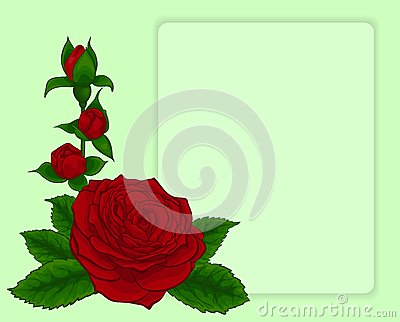 Bouquet of roses. design frame with floral pattern.