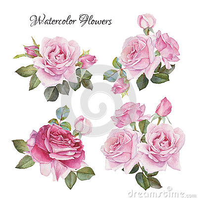 Bouquet of roses. Flowers set of hand drawn watercolor roses Stock Photo