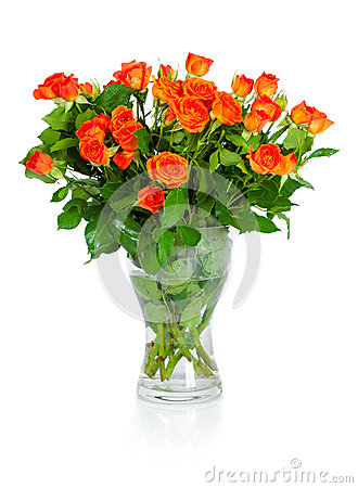 Bouquet of roses isolated on white background.