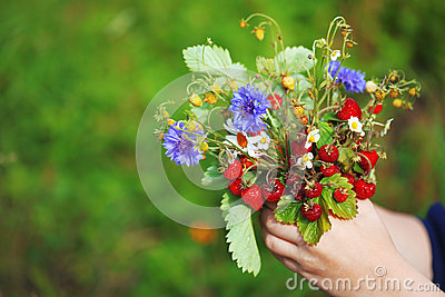 Bouquet of strawberries