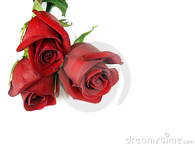 Bouquet from three red roses.
