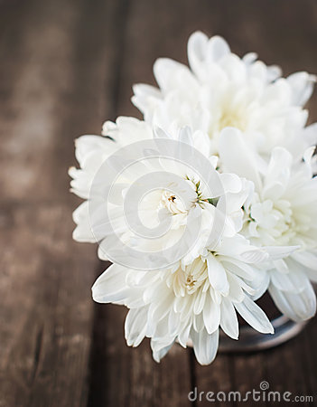 Bouquet of White chrysanthemums on Wooden Background