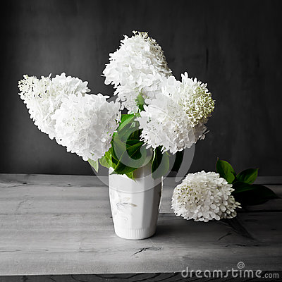 Bouquet of white hydrangea flowers on a dark grunge background.